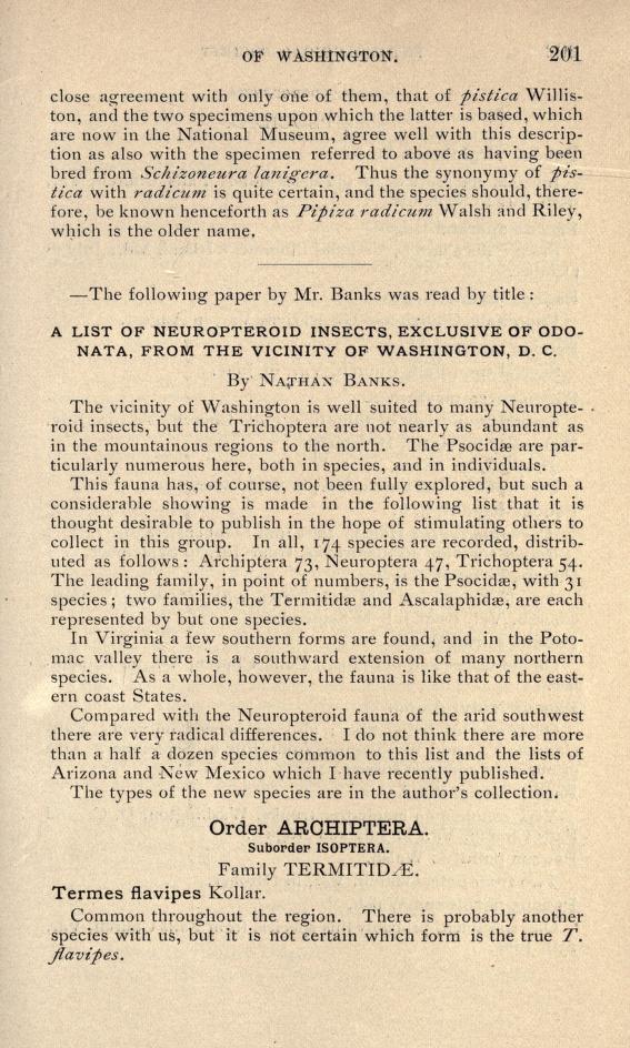 Banks (1904) Proc. Ent. Soc. Washington 6(4): 201-217